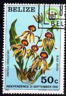 BELIZE [1981] MiNr 0610 ( O/used ) Blumen - Belize (1973-...)