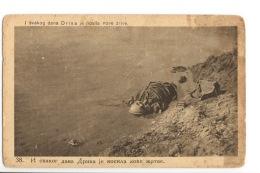 Serbia Moravska Division Victim Unused Ps (mi019) Serbien - War 1914-18