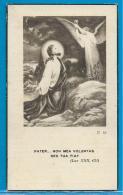 Bidprentje Van Eugenie Decoene - Noordschote - Woesten - 1885 - 1940 - Images Religieuses