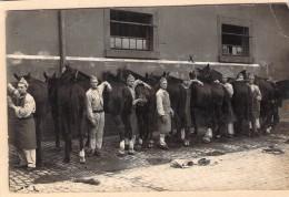 Carte Photo Ancienne Camp De Trèves  1929 Soins Des Chevaux - Guerre, Militaire