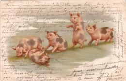 CPA  Cochons Humanisés Jouant à Saute-mouton Porc Pig  Position Humaine Fantaisie Illustrateur - Pigs