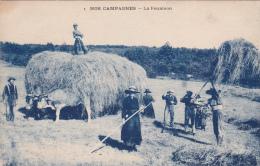 CPA Nos Campagnes La Fenaison Paysan Attelage De Boeufs Agriculture Foin Récolte - Landbouw