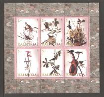 KALMYKIA  1998  MNH - Oiseaux