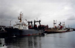 "Bateau Identifié Russe "" Ornitsa  ""     Navire  De Commerce Martitime Urss...1984 STRALSUND - Boats"