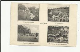 52 - Haute Marne - Ecole De Malroy - Multi-vues - - Francia