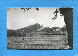 Sainte Anne D'Evenos-vers Le Vallon De Cimaï- Années 50-60-édition Combier - Other Municipalities