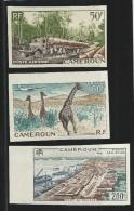 CAMEROUN - POSTE AERIENNE YVERT N° 46/48 * NON DENTELES - Kamerun (1915-1959)
