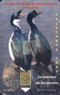TELECARTE TAAF / FSAT PHONECARD #20060010 / N° 38 - Cormorans De Kerguelen - Cote IPCphonecards: 40€. - TAAF - Franz. Süd- Und Antarktisgebiete