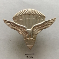 Badge (Pin) ZN002363 - Military (Army) Police Insignia Parachuting (Fallschirmspringen) Peru - Militaria