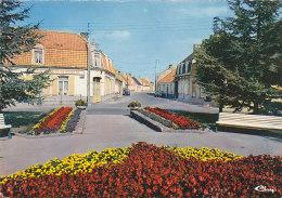 WARHEM 59 - Centre Ville - Zonder Classificatie