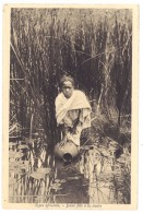 Cpa Types Africains, Jeune Fille à La Source - Cartes Postales