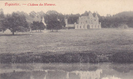 Pepinster - Château Des Mazures (1909) - Pepinster