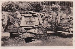 AK Fichtelgebirge - Saale-Quelle - 1932 (24668) - Hof