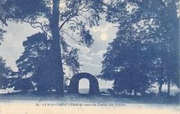 50 - AVRANCHES - Clair De Lune Au Jardin Des Plantes - Avranches