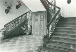 CPM - Château Féodal De LAVAUX-Ste-ANNE - Hall D'entrée - België