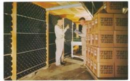 Wente Wines, Winery, Checking Wines In The Bins, California Winery, C1960s Vintage Postcard - Vines