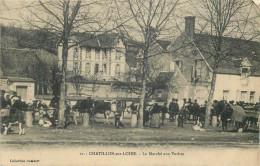 45 - CHATILLON Sur LOIRE - Marché Aux Vaches - Chatillon Sur Loire