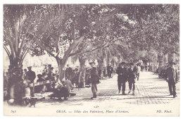 Algérie - Oran - Allée Des Palmiers, Place D'Armes ( Cp En FM, Cachet Militaire Au Verso, Escadron Du Train ) - Oran
