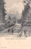DESCENTE DE BATAILLE- ROUTE DE CHARMEY-BULLE - FR Fribourg