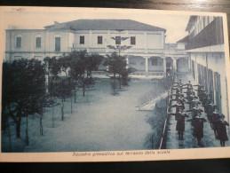 Alì Marina-Messina Collegio Maria Ausiliatrice Ginnastica Usata 1937 - Italia