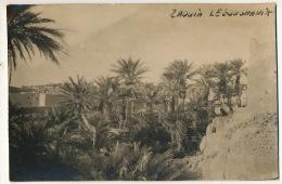Carte Photo Zaouia Legoughania Hoggar Sahara Oasis - Sin Clasificación