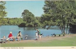 CAMBERLEY - THE LAKE - Surrey