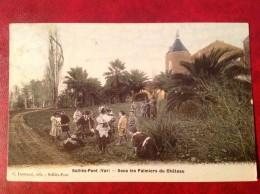 83 Var SOLLIES PONT Sous Les Palmiers Du Chateau - Sollies Pont