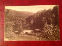 83 Var LES COLLOBRIERES Route De Bormes Les Mimosas - Sollies Pont
