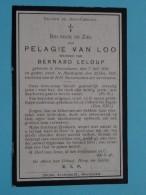 DP PELAGIE Van LOO ( Bernard LELOUP ) Knesselaere 7 Juli 1839 - Maldegem 22 Dec. 1921 ( Zie Foto's ) ! - Décès
