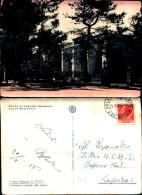 3311a)cartolina-  Selva Di Fasano Prov.brindisi Casina Municipale-f.to.g.pesce Stampa Ottomano - Brindisi