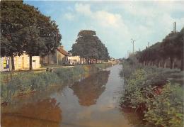 CHER  18    SAINT AMAND MONTROND    LES BORDS DU CANAL - Saint-Amand-Montrond