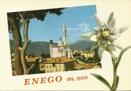 ENEGO  VICENZA   Panorama Con La Chiesa   Stelle Alpine  Edelweiss - Vicenza