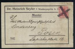 A4151) DR Vollständiger Adressträger Von Niederpoyritz Nach Posen Mit Stummem Stempel - Deutschland
