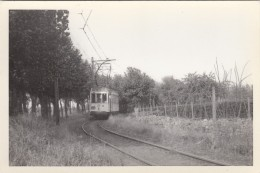 Hamme  Uitrit Van De Stelplaats Richting Antwerpen (Lijn H)  06/07/1959    TRAM  TRAMWAY - Hamme