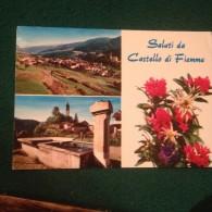 Cartolina Saluti Da Castello Di Fiemme Fiori Dolomiti Viaggiata  Trento - Trento