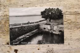 Siracusa - Fontana Aretusa - Siracusa