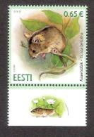 Estonian Fauna - Northern Birch Mouse 2016 Estonia MNH Corner Stamp + Label - Estland