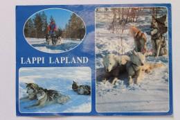 Lappi Lapland, Husky Dog Safari, Suomi Finland - Finland