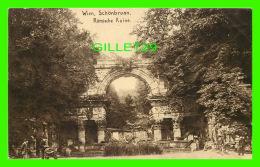 WIEN, AUTRICHE -VIENNE - SCHONBRUNN, ROMISCHE RUINE - HUPFERDRUCK-KUNSTLERKARTE , 1910 - - Vienne