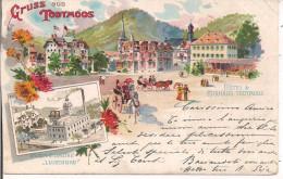 GRUSS AUS TODTMOOS,1901,ITALIA,MILANO - Todtmoos