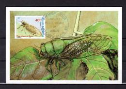 """WALLIS ET FUTUNA 1998 : Carte Maximum """" PETITE CIGALE DE WALLIS """". N° YT 522. Parfait état. CM - Insectes"""