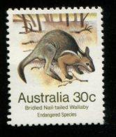 AUSTRALIE 1981 POSTFRIS MINTNEVER HINGED POSTFRIS NEUF YVERT 750 - Neufs
