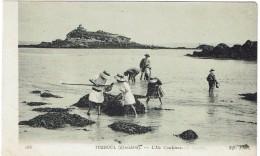 CPA - 29 - TREBOUL - L'ile Coulinec - - Tréboul