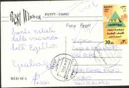 Egypt 2005 Used Postcard Send To Switzerland (Red Sea) - Lettres & Documents
