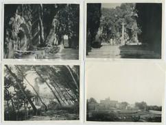 (Gard). Lot De 16 Photos. Château De Montfrin, 1928. - Lieux