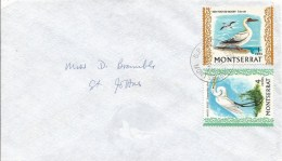 Montserrat 1972 Plymouth Red-booted Booby  (Sula Sula) White Egret Bird Local Cover - Montserrat