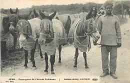 PIE-16 322 :  CONVOYEUR DE L ARMEE INDIENNE  INDIAN ARMY CONVEYER ANE MULE - Guerra 1914-18