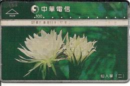 CARTE -HOLOGRAPHIQUE-TAIWAN-FLEURS--TBE - Taiwan (Formose)