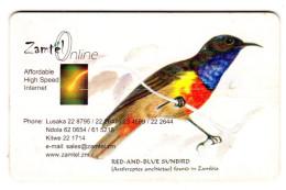 ZAMBIE REF MV CARDS ZAM-Z-02 BLUE SUNBIRD