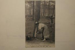 CPA Dans Les Landes Resinieres Ramassant La Gemme 1915 - TOE02 - France